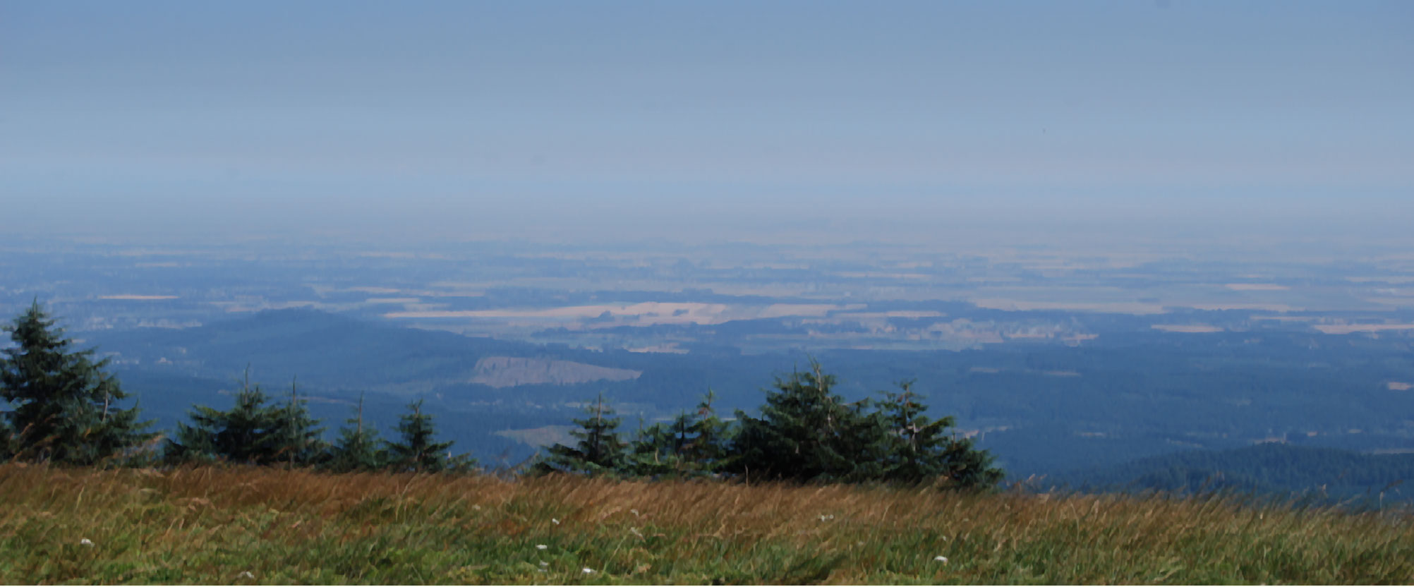 Willamette Valley From Marys Peak